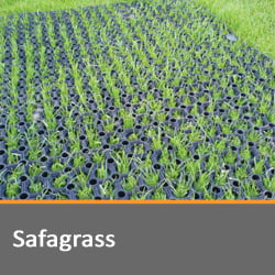 Safagrass Matting